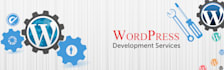 build wordpress website or blog
