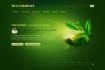 design Awesome PSD Web template