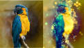 do shimmer effects to your photo