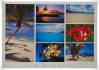 send you 2 beautiful random postcard from Mauritius