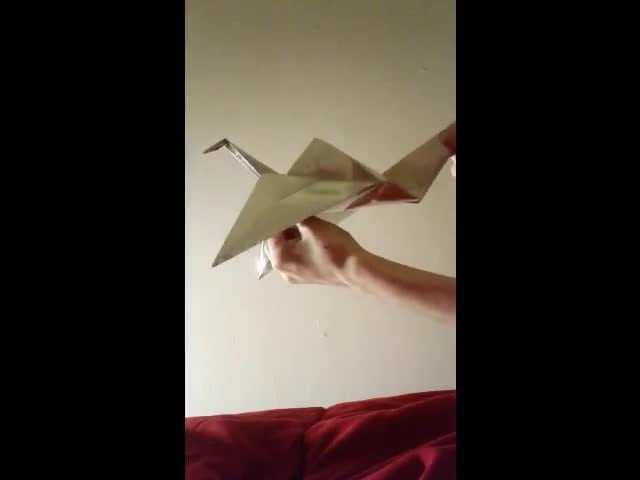 Origami Flapping Bird Tutorial | 480x640